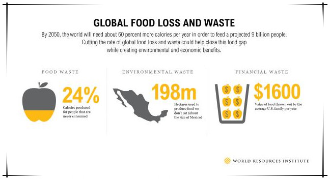 global food loss and waste