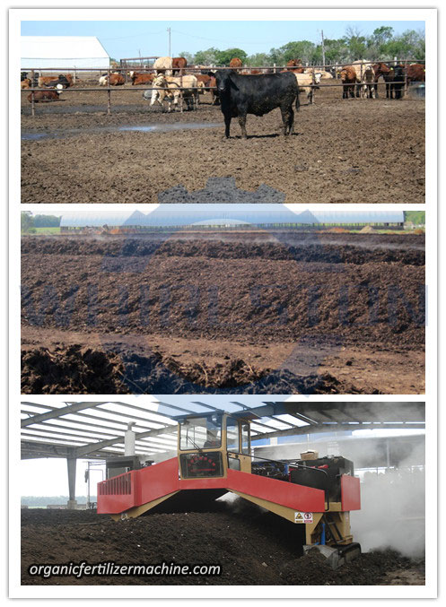 Cow Dung Organic Fertilizer Manufacturing Process & Machines