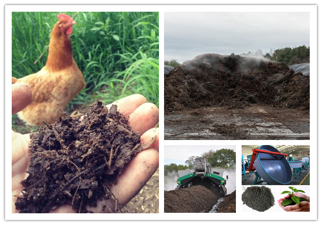 How to Process Chicken Manure for Fertilizer | Chicken Manure Composting