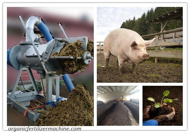pig manure compost