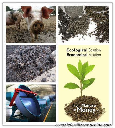 pig manure granulation