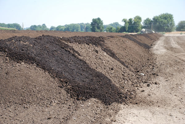 A Guide to Compost Sheep Manure for Organic Fertilizer