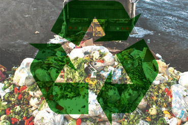 how to recycle food waste