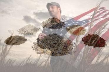 organic-fertilizer-plant-in-US