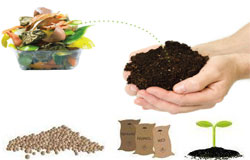 organic-waste-recycling