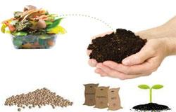 organic-waste-recycling
