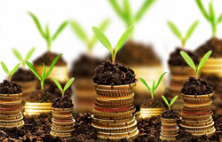 organic-fertilizer-business-plan