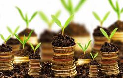 organic-fertilizer-business-plan