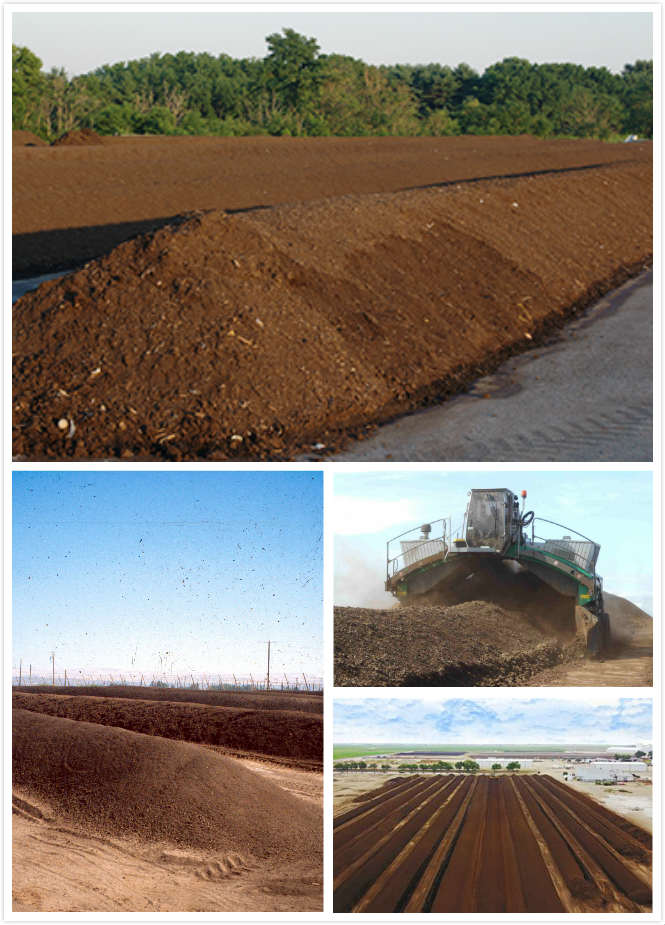 composting windrow